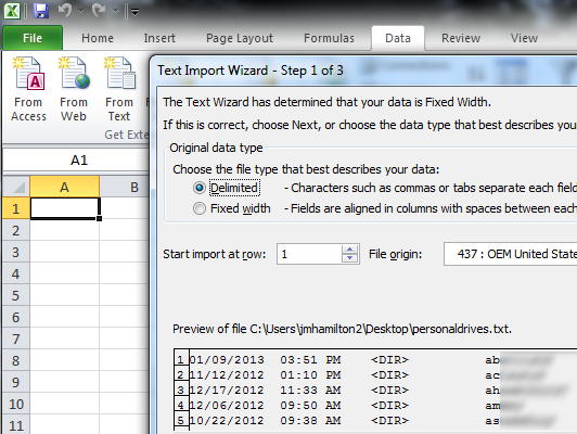 excel delimited Massaging data to have usable information and save a few keystrokes